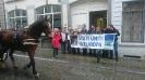 Campagna per la Federazione Europea: Flashmob a Bruxelles-2